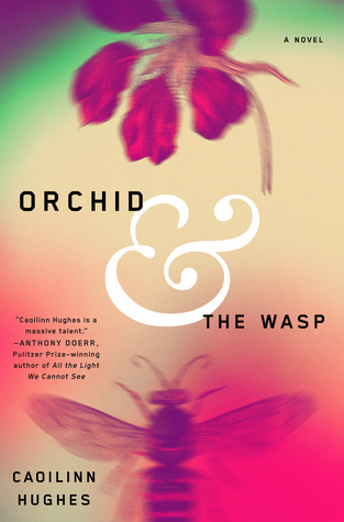 Orchid_Wasp