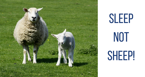 Image of two sheep standing on grass with the text 'Sleep not Sheep!'
