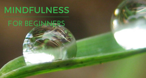Image of water drop with text 'Mindfulness for Beginners'