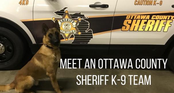 Meet An Ottawa County sheriff K-9 Team