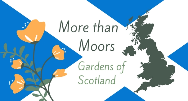 "Scotland's flag (blue rectangle with white x) overlapped by silhouette of Scotland and illustrated orange flowers with text that reads ""More than Moors Gardens of Scotland"""