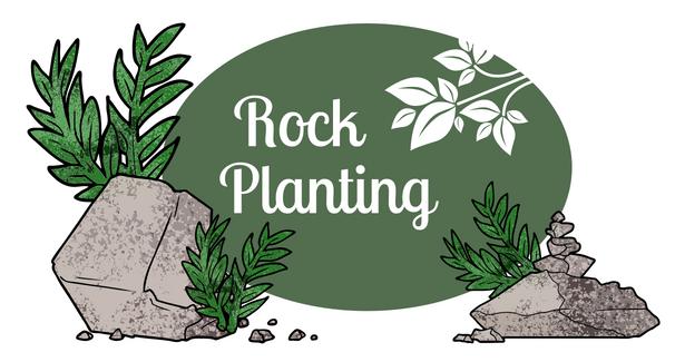 Rock Plantings