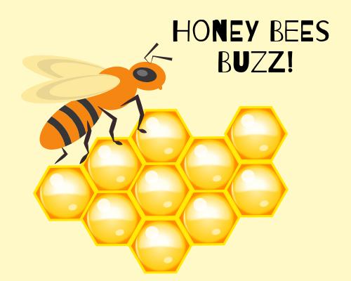 Honey Bees Buzz!